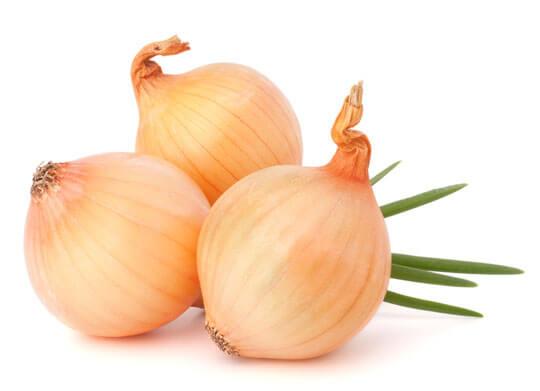 Die Zwiebel: Gemüse und Heilpflanze